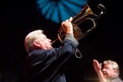 bohemia-jazz-fest-201121