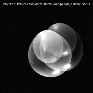 projekt-z-zelenka