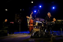 Shai Maestro Trio at Divadlo u Hasičů