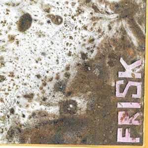 Absolutně svobodná science f(r)iction pardubického tria Frisk