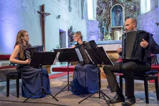 Check Accordion Trio