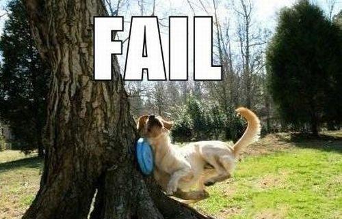 what-is-fail