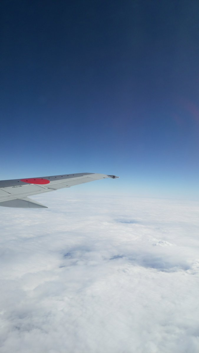那覇空港から福岡空港へ向かうJTA機上からの雲海。長男坊が撮ってくれました。