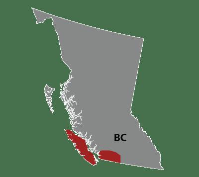 Kyle Dias - Regional Representative for BC Lower Mainland, Vancouver Island and Sunshine Coast