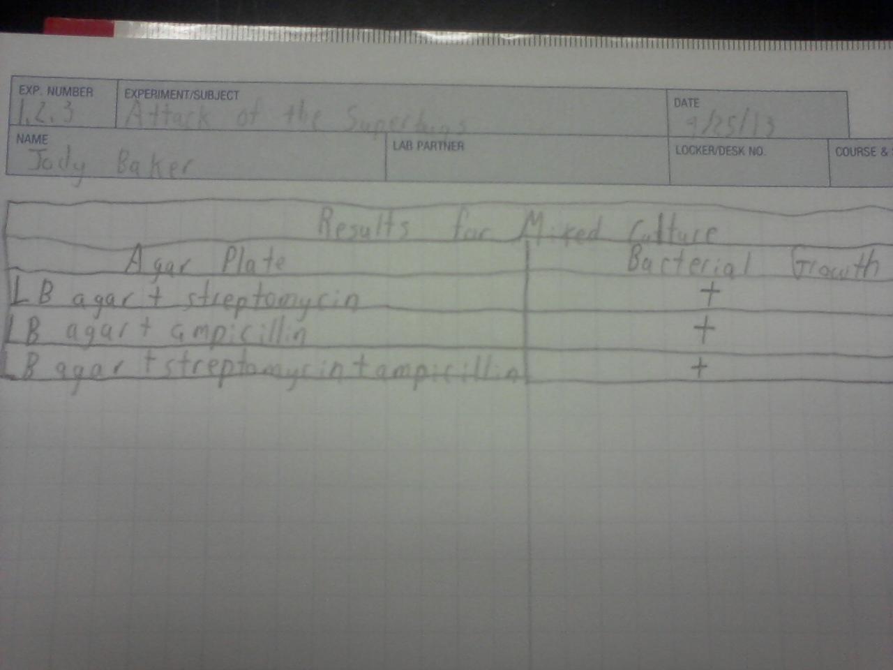 Mi Classroom Activities