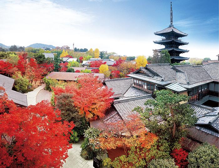 五重塔を背景に手前に広がる和の建物が「THE SODOH HIGASHIYAMA KYOTO」 高台寺、八坂神社、古い町並みが見事な一念坂・二寧坂などの名所が集まる京都の名所・東山に位置し、四季折々に美しい 写真は秋の紅葉の中優美な姿で佇む同館 幾重にも重なる屋根の複雑な形状からも建築に携わった職人の技量の確かさが伺い知れる