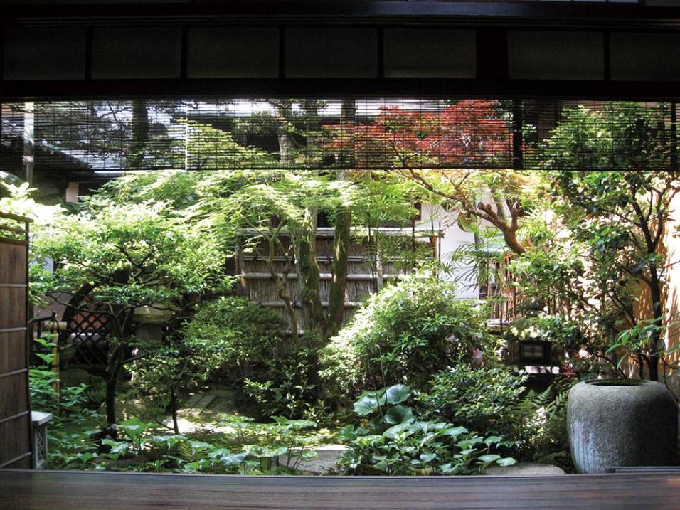 京都 冨田屋 坪庭の写真