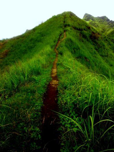New Trail Mt. Batulao