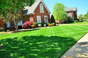 Tips for Keeping Your Lawn Equipment Properly Maintained