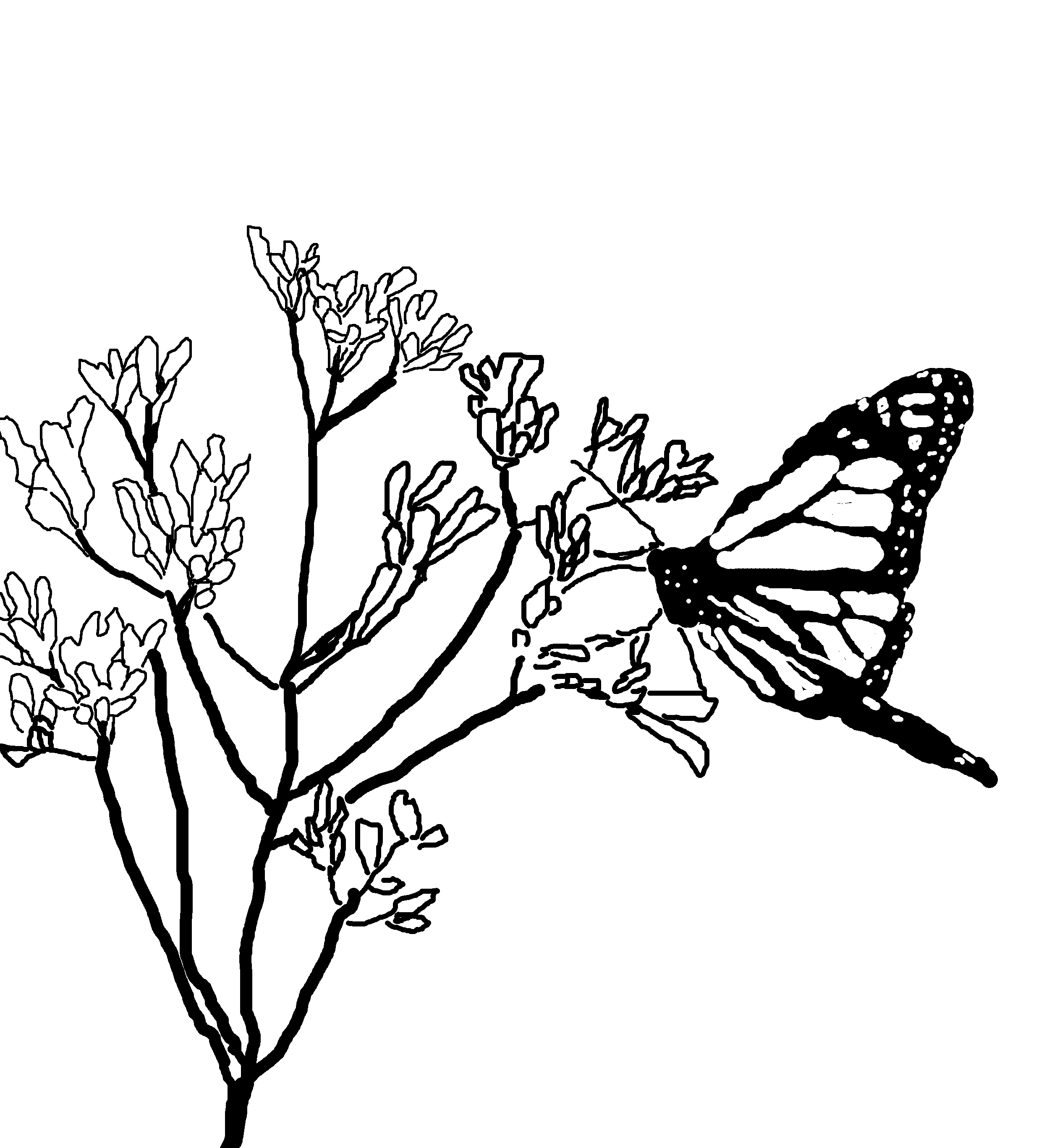 Park Ranger Coloring Coloring Coloring Pages