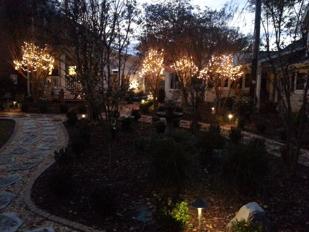 LandscapeLighting-Residential-Williams(6)