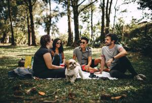 Four people having a picnic.