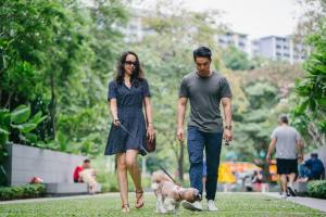 -man and woman walking in the park with a dog