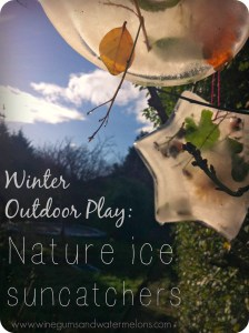 Winegums and Watermelons: Nature Ice Suncatchers