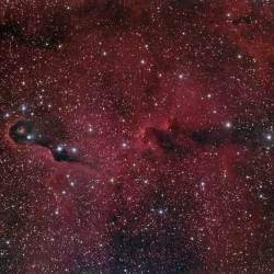 IC 1396, Elephant Trunk Nebula