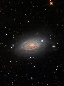 M63,NGC 5055,Sunflower Galaxy