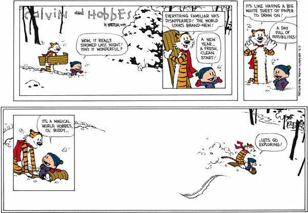 Happy 30th Birthday Calvin And Hobbes Borden S Blather