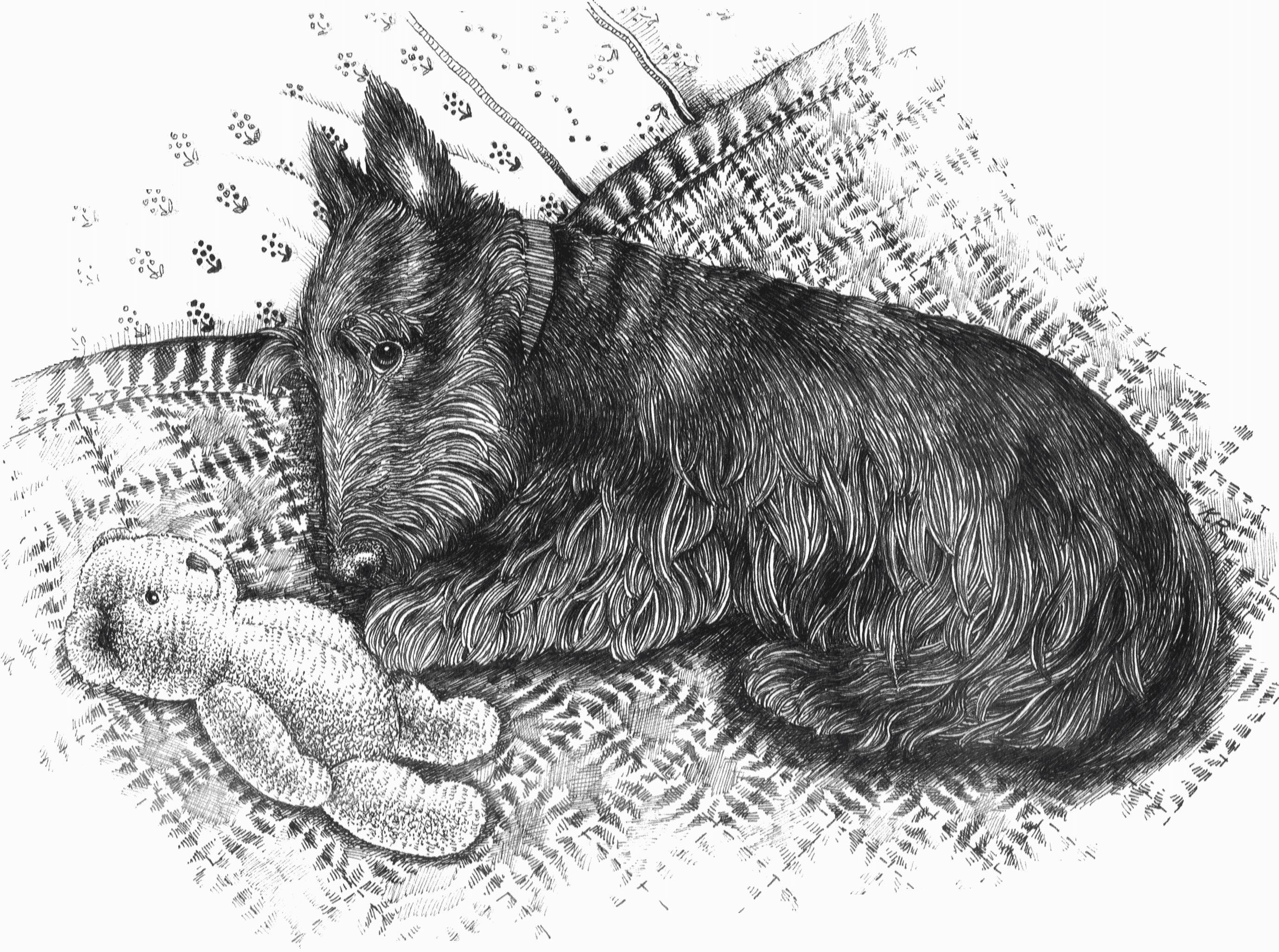 Pen And Ink Drawing Resource Post