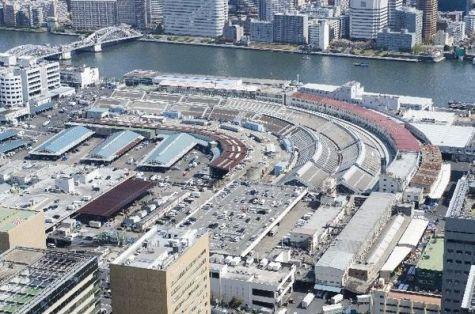 「築地市場豊洲移転」の画像検索結果