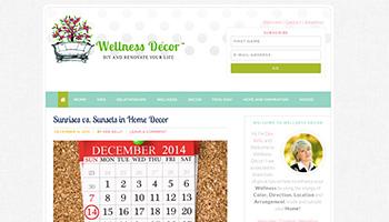 Wellness Decor Website
