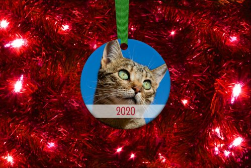 The Cat Connection Holiday Ornament