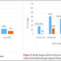 Quality of Life and Functional Outcome of Patients Treated with Revision Limb Salvage Surgery and Amputation: A Cross-Sectional Study