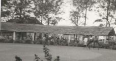 Nakuru races (3)