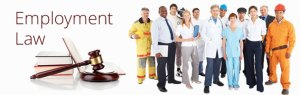 employment law NYC