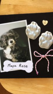 mayarose casting creation Janean dog