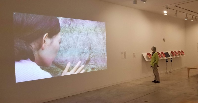 The exhibition features both visual art and multi media installation.