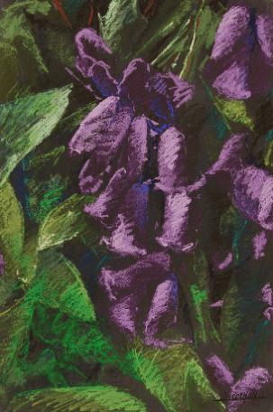 2007 - Pastel / Floral 003