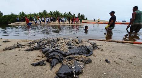 Image result for Pernambuco recolhe 1.358 toneladas de óleo em oito dias