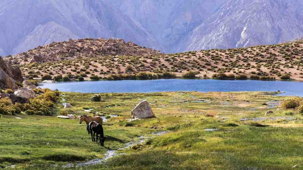 Trekking Valle del elqui - Laguna el Cepo