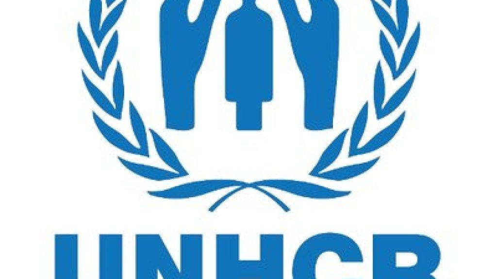 """מועצת האו""""ם לזכויות אדם – עוינות, דעה-קדומה, משוא-פנים וסטנדרט-כפול"""