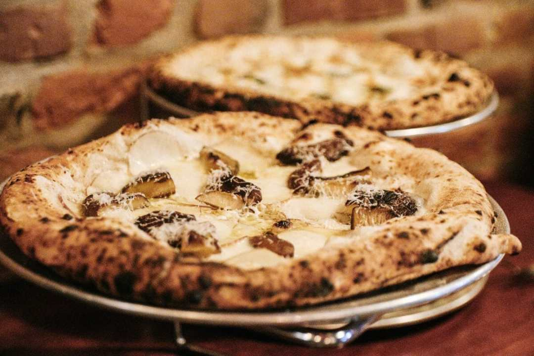 Pizza LUPO in Louisville, KY - Photo by JCP Eats