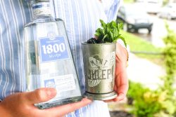 Blackberry Mint Julep Margarita, Kentucky Derby Party Cocktails