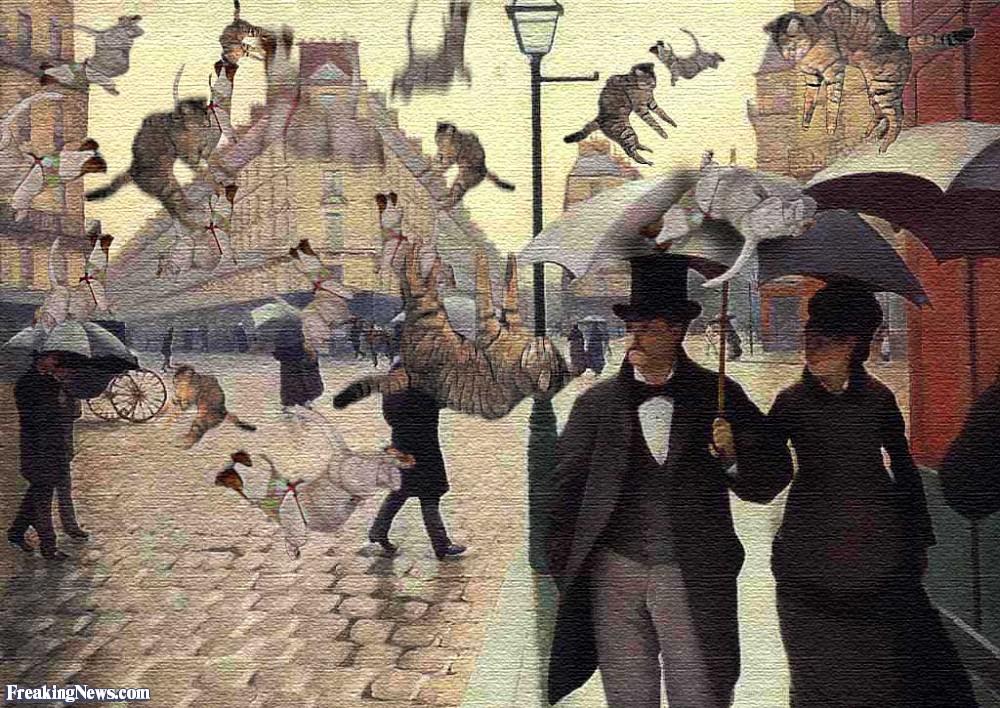 Etymology Excavation: Raining cats and dogs   J C Steel, Author