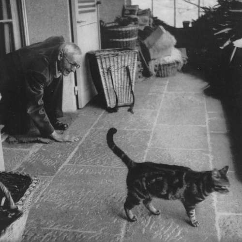 Writers and Kitties: The Ultimate Pair