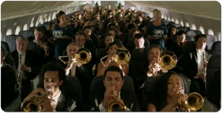 law airline musical instruments