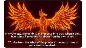 Phoenix from Ashes