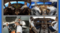 Collage of Pilots