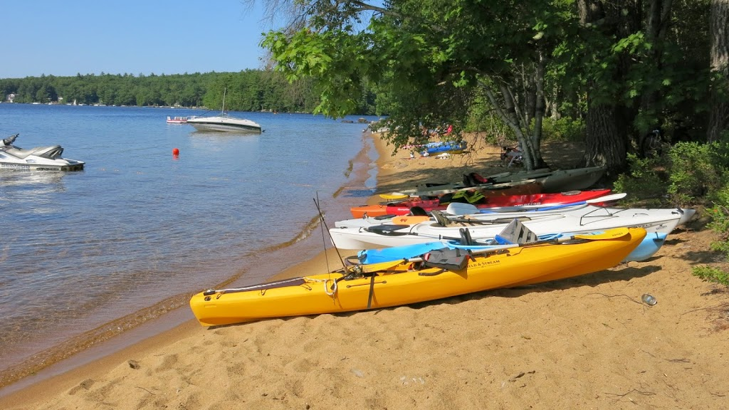 Maine's Sebago Lake State Park – Lakeside Camping at its Best