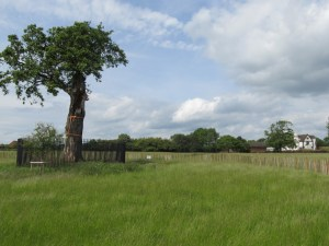 Boscobel - the house and the 'offspring' of the original Royal Oak