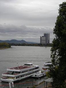 Bonner Herbst 1241