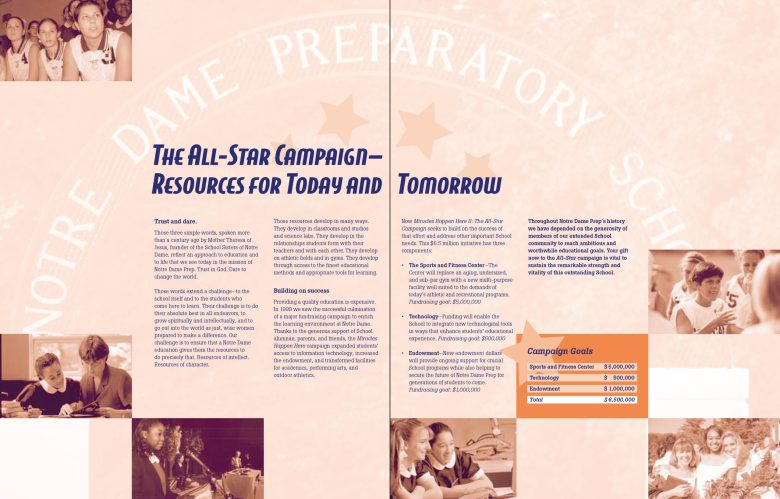NDP All-Star Campaign Case Statement gatefold