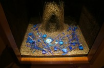 bower bird nest inside an exhibit