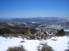 looking down into Saline Valley