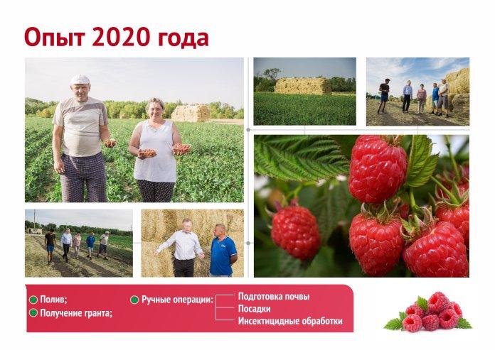 Бизнес Презентация презентация РусАгроКооперация 2020