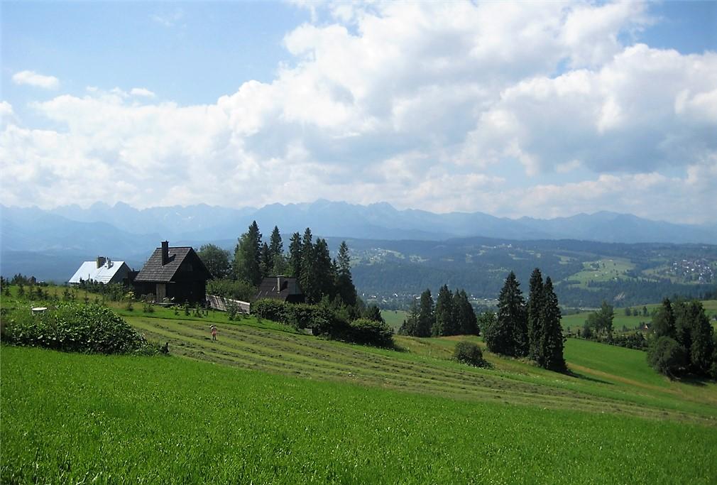 Widok ze szlaku Magury Spiskiej. Zielona łąka w oddali drzewa. W dali wyłaniają się Tatry.