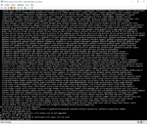 Install_Ubuntu_Server_10